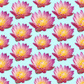 Water Lily pattern Royalty Free Stock Photo