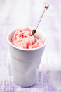 Water melon sorbet in a cup Royalty Free Stock Photography