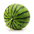 Water melon on white background Royalty Free Stock Photo