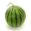 Water melon on white background Stock Images