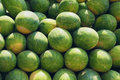Water melons Royalty Free Stock Photo
