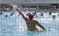 Water polo goal in match Royalty Free Stock Photo