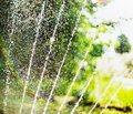Water pour splashes and bokeh from watering in summer garden with sprinkler on blurred tree foliage background outdoor Stock Image