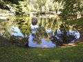 Water reflections in small pond Royalty Free Stock Photo