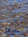 Water ripples over pebbles