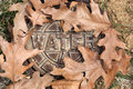 Water shutoff valve cover small surrounded with dead leaves Royalty Free Stock Photo