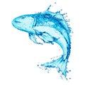 Water splash,fish Royalty Free Stock Images