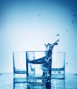 Water splash in a glass Royalty Free Stock Photo
