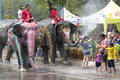 Water splashing festival in thailand ayutthaya apr revelers and elephants join during songkran on apr ayutthaya the Royalty Free Stock Images