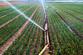 Water sprinkler on an agriculture field Royalty Free Stock Photo