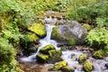 Water stream on mountain river, Dolomites, Italy Royalty Free Stock Photo