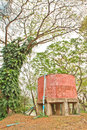 Water tower old fashioned red and tree background Royalty Free Stock Image