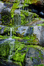 Water trickling over mossy rocks down a wall of Royalty Free Stock Photography
