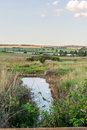 Water in veld Royalty Free Stock Photo