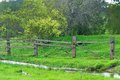 Water wood wire and wattle stream lush grass broken fence bush Stock Photo