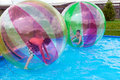 Water zorbing boys in a balls on the Royalty Free Stock Images