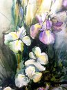 Watercolor art background colorful flower bouquet iris  wet wash blurred Royalty Free Stock Photo