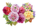 Watercolor autumn garden blooming flowers illustration on white background.