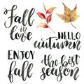 Watercolor autumn lettering phrases. Hand painted calygraphy set. Fall in love, hello autumn, enjoy fall, the best