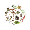 Watercolor autumn print. Hand painted mushroom, rowan, fall leaves, tree branch, pine cone, berry and acorn isolated on