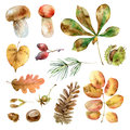 Watercolor autumn set Royalty Free Stock Photo