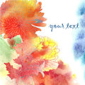 Watercolor background with chrysanthemum colorful vector illustration Royalty Free Stock Photo