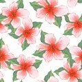Watercolor background with red flowers