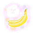 Watercolor banana an illustration of two with a place for your text includes transparent objects and blends layered Stock Images