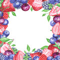Watercolor berries square frame