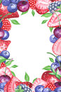 Watercolor berries vertical frame