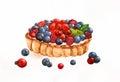 Watercolor berry tart
