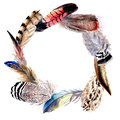 Watercolor bird feather wreath from wing.