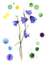 Watercolor bluebell flower with graphic stains of color blue bell and handmade Stock Photography