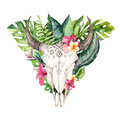 Watercolor bohemian cow skull and tropic palm leaves. Western deer mammals. Tropical deer boho decoration print antlers