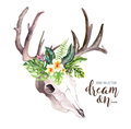 Watercolor bohemian cow skull and tropic palm leaves. Western deer mammals. Tropical deer boho decoration print antlers
