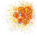 Watercolor bouquet of flowers vector greeting card with bright orange on the white background Stock Photo
