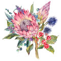 Watercolor bouquet of protea and wildflowers