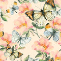 Watercolor briar flowers and butterfly seamless pattern. Dog Rose branches in vintage style Royalty Free Stock Photo