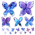 Watercolor butterfly elements in blue Royalty Free Stock Photo