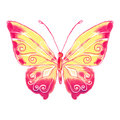 Watercolor butterfly red-yellow