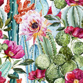 Watercolor cactus pattern Royalty Free Stock Photo