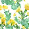 Watercolor cactus, tropical flowers, seamless floral pattern background.