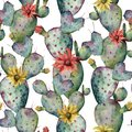 Watercolor cactuses, yellow and red flowers seamless patttern. Hand painted opuntia isolated on white background Royalty Free Stock Photo