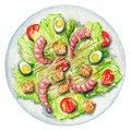 Watercolor caesar salad on a plate with eggs, shrimp, crackers a