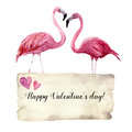 Watercolor card with couple of flamingo and Happy Valentine`s Day inscription. Exotic hand painted bird illustration and