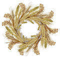 Watercolor cereal wreath rice millet wheat barley and rye Royalty Free Stock Photo