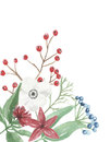 Watercolor Christmas Corner Flower Arrangement Festive Jolly Floral Hand Painted Holidays Royalty Free Stock Photo