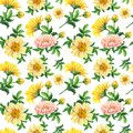 Watercolor chrysanthemums on a white background.Abstract seamless pattern of yellow flowers