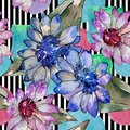 Watercolor colorful african daisy flower. Floral botanical flower. Seamless background pattern.