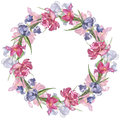 Watercolor colorful handmade round frame with pink tulip and iris flowers